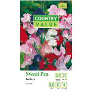 Country Value Galaxy Sweet Pea Flower Seeds