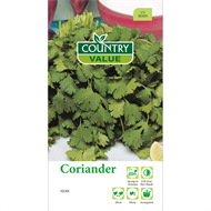 Country Value Coriander Seeds
